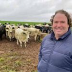 Speckle Park Trial Supports Breed Claims